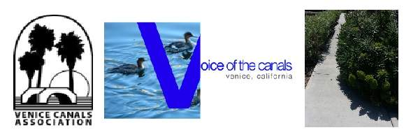 Venice Canals Association / Voice of the Canals